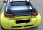 optireduce Windschott Smart roadster coupe